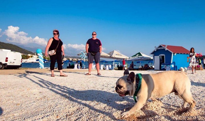 Monty's Dog Beach & Bar -  plaža za pse 16